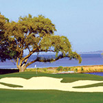 Oyster Reef GC