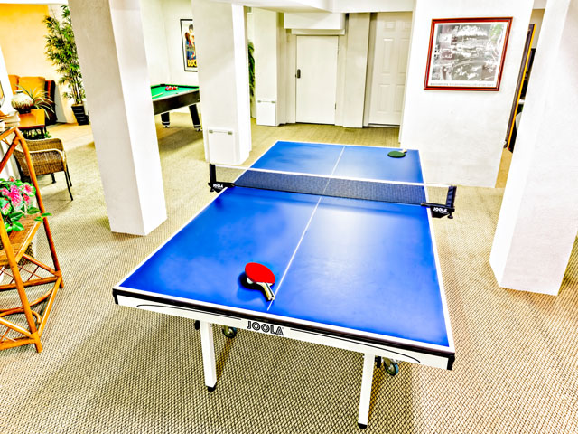 2 Galleon - ping pong table