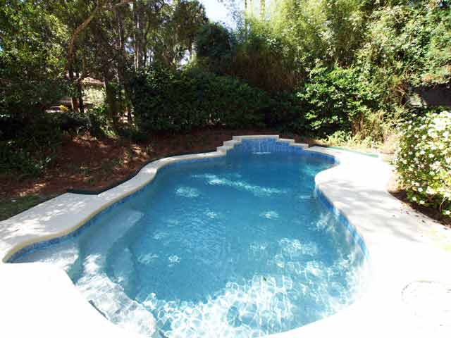 4 Grey Widgeon - Pool