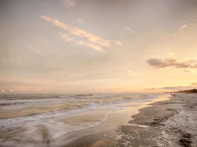 20 Sea Oak - Beach