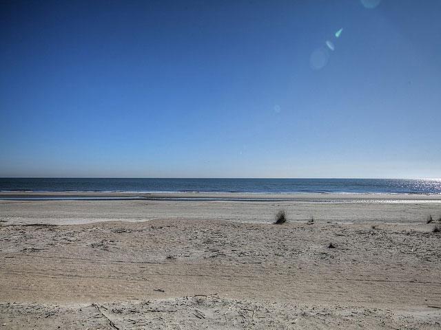 8 Wanderer - Beach