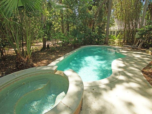 7 sandhill crane - pool 2