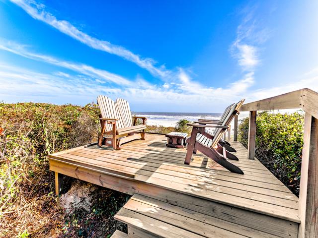 17 Spotted Sandpiper- Boardwalk